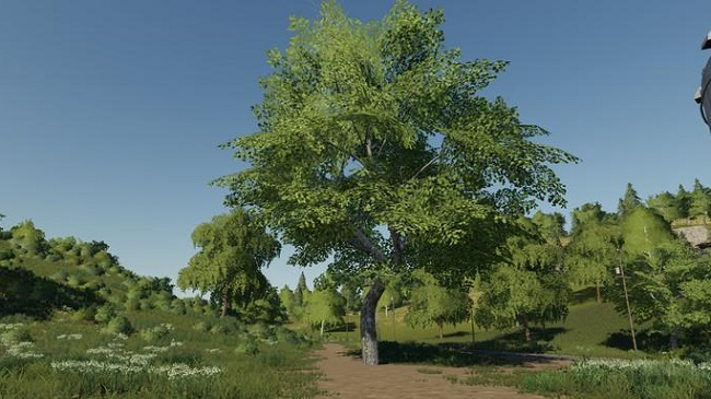 Мод Placeable Trees Pack для FS19 (1.1.0.0)