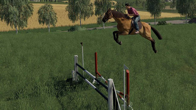 Мод Obstacles Horse sport v1.0 для FS19 (1.3.x)